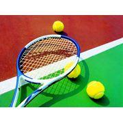 Разметка теннисного корта теннисные столбытеннисные сетки Фоны (ветроломы) фото