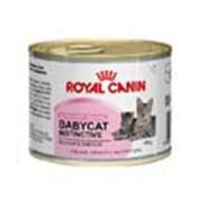 Корм для котов Royal Canin Babycat Instinctive Mousse 195 гр фото