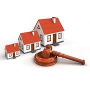 Проведение государственных закупок и подрядных торгов фото