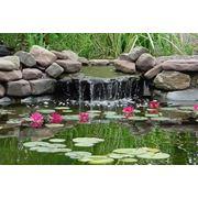 Водоёмы водопады фонтаны фото