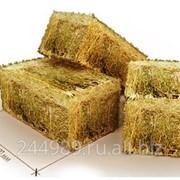 Термошумоизоляционный блок из прессованного сена (соломы) размером 1000 х 500 х 400 мм весом 18 - 20 кг фото