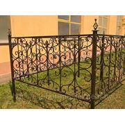 Ограда кованая 011 фото