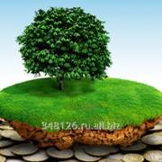 Комплекс услуг по снижению налога на землю фото
