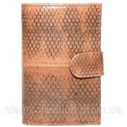 Визитница из кожи морской змеи. EXCLUSIVE SNCH 18-1 Tan фото