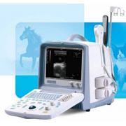 Ветеринарное оборудование фото