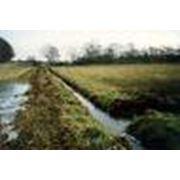 Противоэрозионная агролесомелиорация земель фото