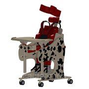 Товары для инвалидов Ортопедический вертикализатор CAMEL (комплектация Далматин) фото
