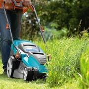 Послуги Садівника ( Стрижка газонів, догляд за декоративними рослинами, топіарна стрижка) фото