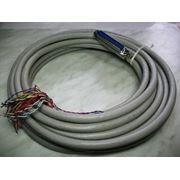 Амфенол с кабелем UTP 25x2 кат.3 (полная распайка) для телефонных станций фото