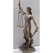 Защита интересов граждан и организаций в судах. фото