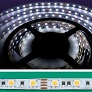 Гибкая супер-яркая монохромная SMD-светодиодная лента QuaLED (КНР) фото