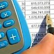 Налоговые отчеты фото