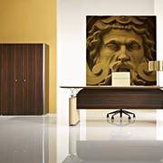 Мебель для рукководителя Шпон фото