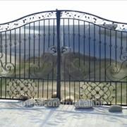 Ворота двухстворчатые №65 фото