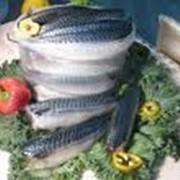 Рыба соленая фото