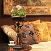 Настольные композиции флорариумы фото