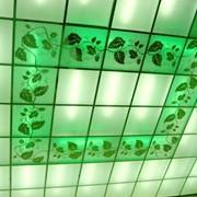 Светопропускающие потолки. НОВИНКА!!! фото