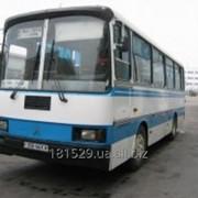 Автобус ЛАЗ А141 фото