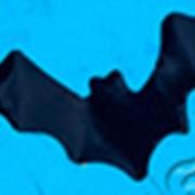 Конфетти Летучая мышь (d 2,5x5 см), цвет черный фото