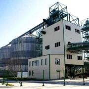 Производственный комплекс по переработке маслосодержащих культур фото
