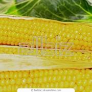 Кукуруза 5 помола фото