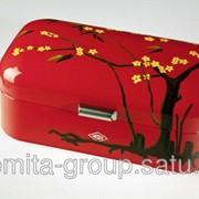Wesco Хлебница Весна, ручная роспись, красная 235201-151 фото