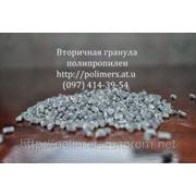 Полипропилен — литьевой (А4) фото