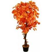 Искусственное дерево Клен Ватан (Код товара: 47419) фото