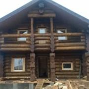 Сруб дома из сосны фото
