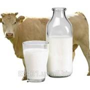 Химический анализ молока (Экспресс-анализ молока и Расширенный анализ молока) фото