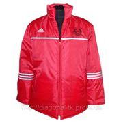 Куртка спортивная зимняя фото