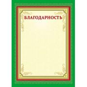 Благодарность, цветной мелованный картон, А4(210х290), (Проф-Пресс) фото