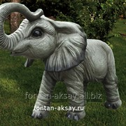 Слонёнок фото