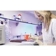 """Курс обучения """"Внутренний аудитор систем управления качеством по EN ISO 17025"""" фото"""