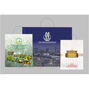 Пакеты бумажные с логотипом, ламинированные, цветностью 4+0, формат 32х23х7,5см фото