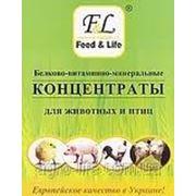 5% концентрат для молодняка кур-несушек кросса Lohmann с карофиллом от 51 до 80 недель фото