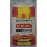 Мука пшеничная и макаронные изделия. фото