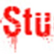 Work and Study Canada от Studex фото