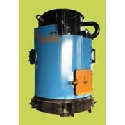 Котел стальной водогрейный газовый КС-ГВС 12,5-20 ДR фото