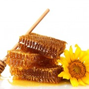 Мёд Украина фото