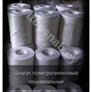 Шпагат полипропиленовый 2200 текс фото