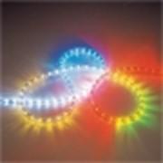Светящийся провод Дюралайт фото