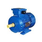 Электродвигатель взрывозащищенный ВА355S4 250/1500 IM1081