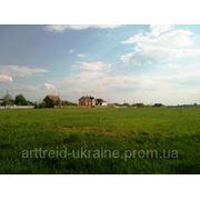 Киевская область, Бориспольский район, Малая Александровка, 3,03 га, 30 км от Киева фото