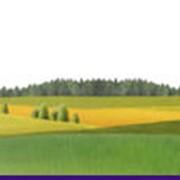 Купля-продажа земельных участков фото
