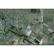 Киевская область, Бориспольский район с. Воронков, 7 га, 50 км от Киева фото
