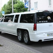 Прокат лимузинов 050 226 44 42 фото