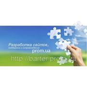 Изготовление сайта на платформе prom.ua по бартеру фото
