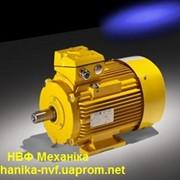 Электродвигатели с привязкой мощности к установочно-присоединительным размерам по стандартам CENELEC фото