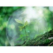 Комплексное экологическое обслуживание фото